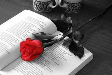 20080423000746-rosa-y-libro.jpg