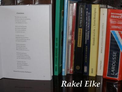 20081220145724-libros-de-raquel.jpg