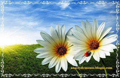 20150320122437-primavera.jpg